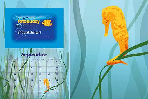 sea horse illustration with calendar sample sheet